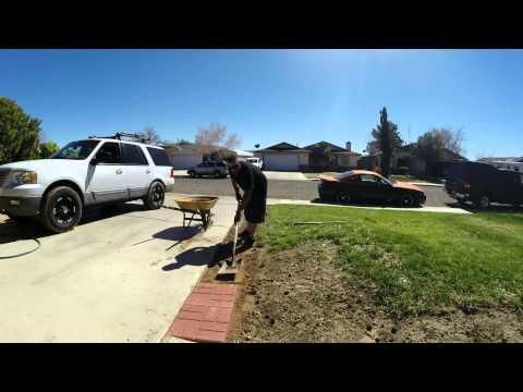 Pavers along driveway time lapse.