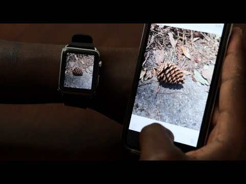 How To Save Pictures To Apple Watch Get Photos On Apple Watch Using Favorites