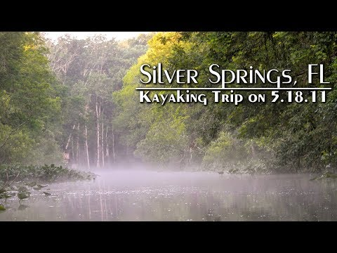Silver Springs Florida - Wild Monkeys and More!