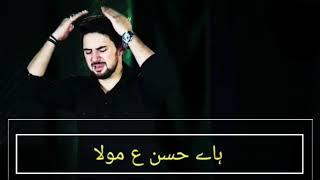 HAye hassan mola | Noha | Short Clip