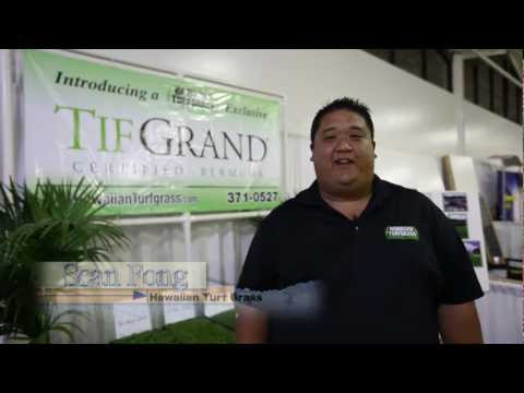 Hawaiian Turfgrass - TifGrand® Certified Bermudagrass Sod Hawaii