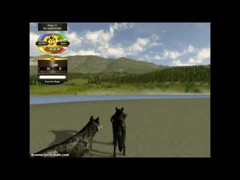 WolfQuest: Easy way across the creek with a pup