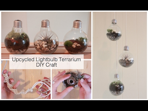 How To Make A Light Bulb Terrarium & Macrame Wall Hanging | DIY Crafts