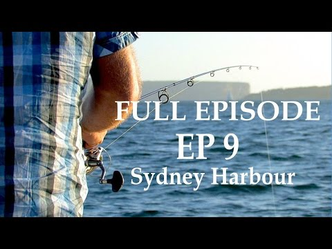 Fishing Sydney Harbour | The Hook and The Cook