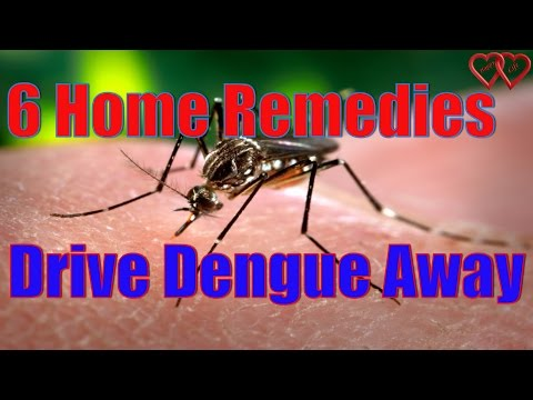 6 Home Remedies will Drive Dengue Away