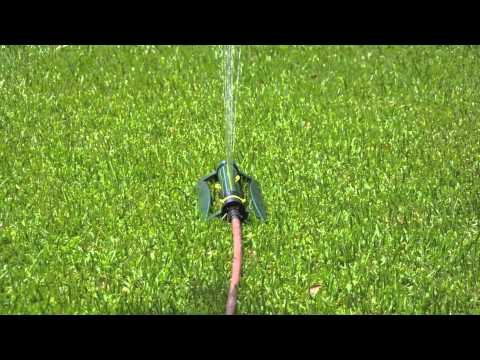 How To Establish New Lawn