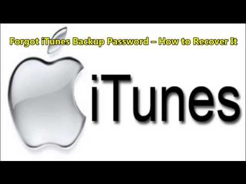 Forgot iTunes Backup Password – How to Recover It