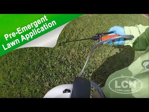Spring Pre-Emergent Lawn Application | Prodiamine