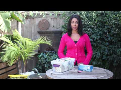 How to Freeze Vegetable Seeds : Planting the Seed