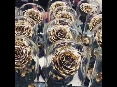 2020 Amazon hot sale gold rose in glass dome for mothers day