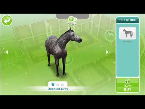 Looking after horses at the stable~sims freeplay~
