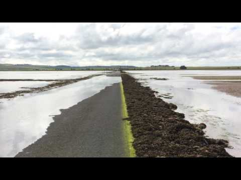 The Holy Island of Lindisfarne Causeway: Tide Coming In