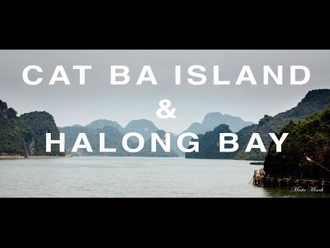 Cat Ba Island & Halong Bay | Vietnam Vlog 16