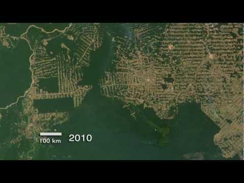 Amazon Deforestation in Rondônia, Brazil (2000-2010) [720p]