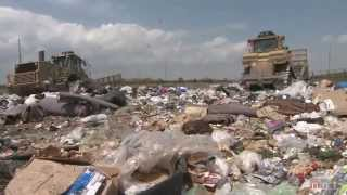 Tossed Out: Food Waste in America