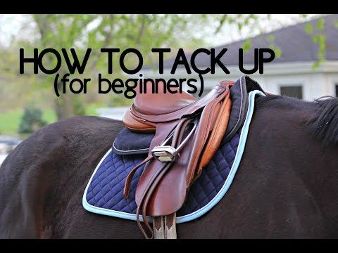How To Tack Up Your Horse English
