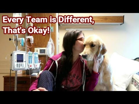 🏥 How Does My Service Dog Help Me in the Hospital? 🐾🤔
