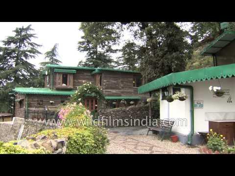 Rokeby Manor - The Tea Garden, Landour