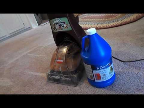 Cleaning my Carpets using Adams Flea and Tick Shampoo