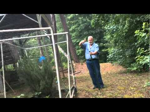 Install the Electric Fence - Part 1
