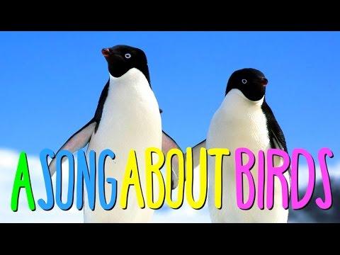 AUSTRALIAN SONG ABOUT BIRDS