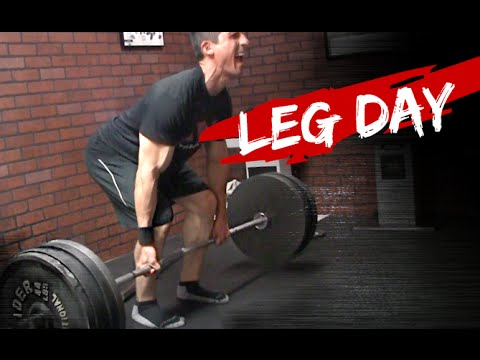 Leg Strength Workout (JUST 2 EXERCISES!)