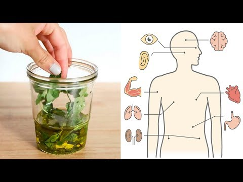 Why Oregano Oil Is One Of The Greatest Things You Could Own