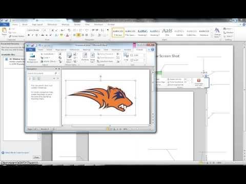 Microsoft 2010 Word Screenshot Walkthrough