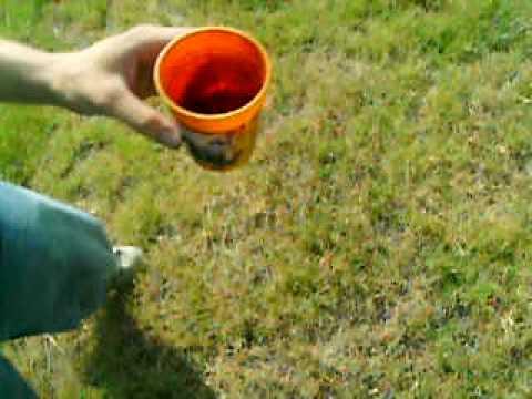 How to catch a Tarantula!