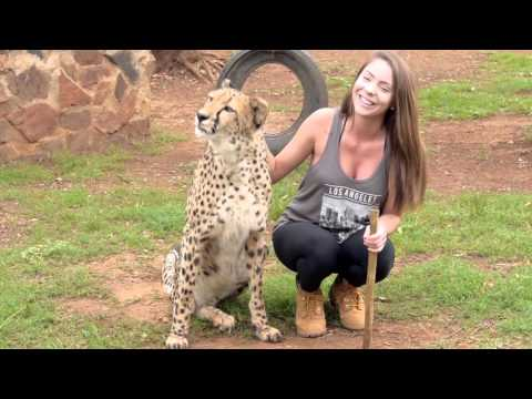 Living and working with wild animals - South Africa 2016