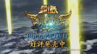Saint Seiya: Soul of Gold Blu-ray & DVD Vol.1