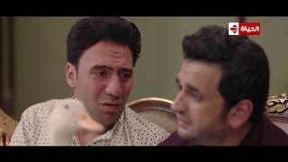 قمة الكوميديا: عندما يتحول الإنسان من سلحفاة إلى بطة!