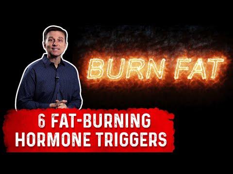 The 6 Fat Burning Hormones Triggers