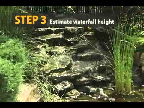 How to choose a pond pump in 4 steps
