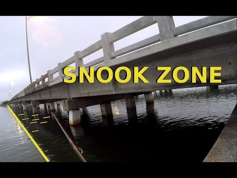 How To Catch Snook Around Bridges, Where and When to Fish
