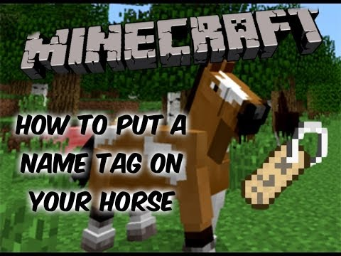 Minecraft || How To Put A NameTag On Your Horse