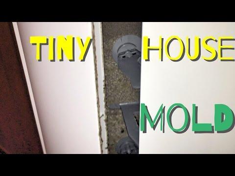 Tiny House Mold Problems