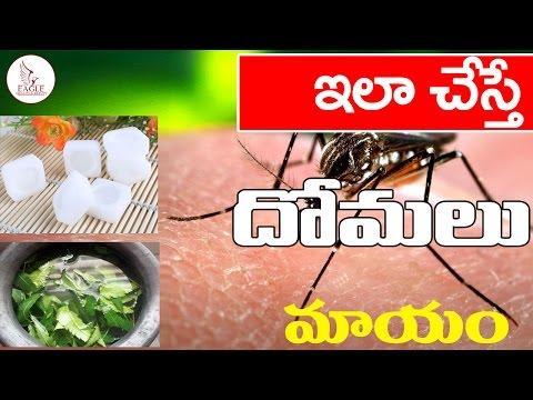 ఇలా చేస్తే దోమలు మాయం   Home Remedies to Get Rid of Mosquitoes   Eagle Health