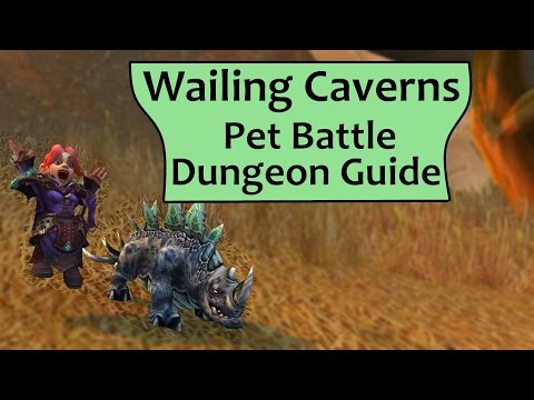 Wailing Caverns Pet Battle Dungeon Complete Guide