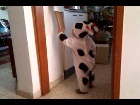 cow costume Carmiel