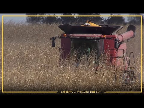 Making The Most of Harvest I Growing Season: Legacy