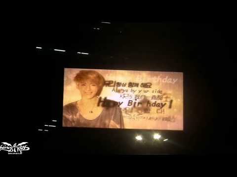 [MK Birthday Support] Video of LED Ads at Myeongdong and Dongdaemun
