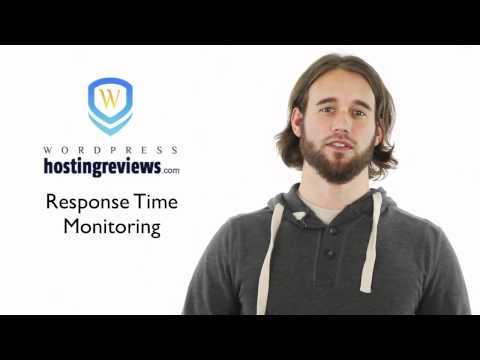 Uptime Monitors and WordPress