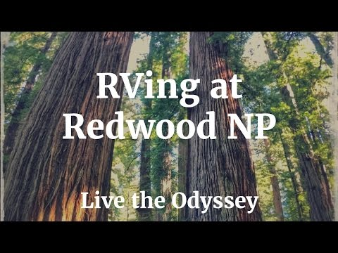 RV Camping at Redwood National Park - S01E65  Live the Odyssey