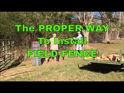 THE PROPER WAY TO INSTALL FIELD FENCE - WITH SOME BABY GOAT FOOTAGE #63