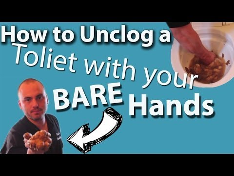 Unclog a Toilet With Your Bare Hands - DISGUSTING!!!