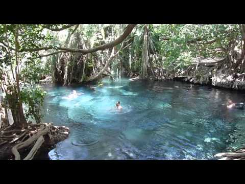 Rope Swing at Tropical Swimming Hole