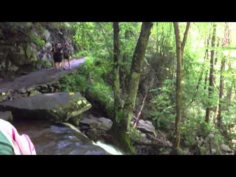 Smoky Mountain TN Waterfalls
