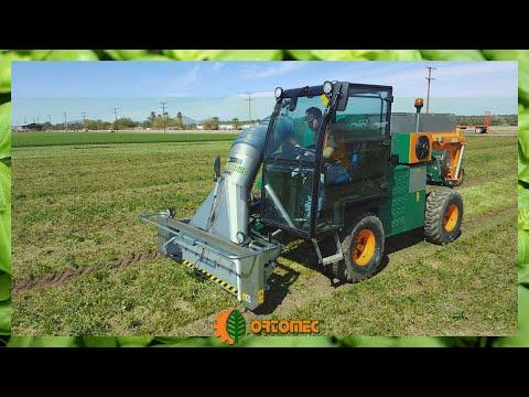 ORTOMEC CLEANER 2 vacuuming machine: cilantro cutting