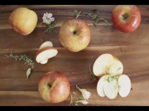 Baby Food | Apple Sauce with Cinnamon & Lemon Zest